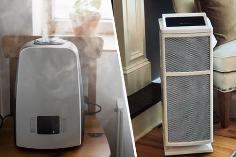 Air Purifier vs Humidifier Which One Do You Need