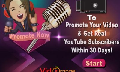 Organic Music Promotion