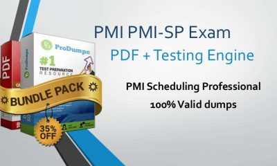PMI PMI-SP exam Dumps