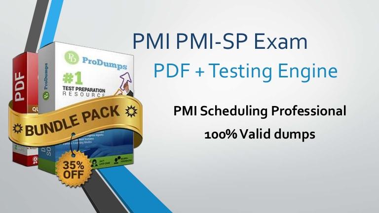 PMI PMI-SP exam Dumps