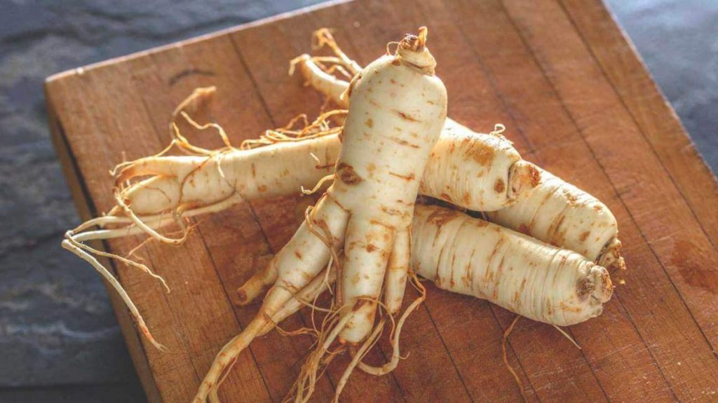 Pros and Cons of Using Ginseng