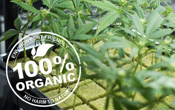 Arrange Organic Soil