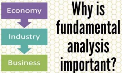 Why fundamental analysis is so important in the Forex market