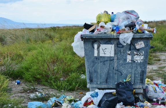 Do I Need Professional Waste Disposal Services