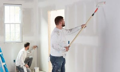 Types Of Wall Paint