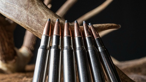 How To Reload Accurate Rifle Ammunition Successfully