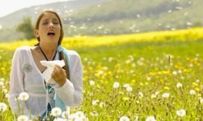How To Manage Hay Fever