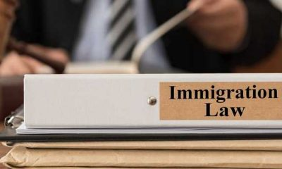 Why do you need an immigration lawyer