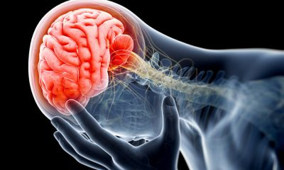 Brain Injuries; Forms and its effects: