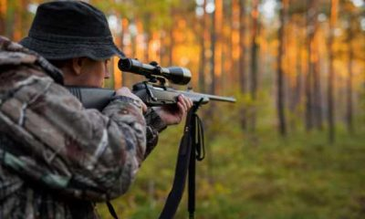 How to Shoot a Rifle Safely and Accurately