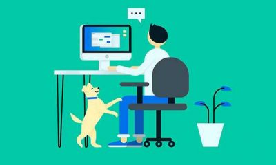Best Ways That Help You Stay Focused While Working Remotely