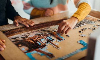 Wooden Jigsaw Puzzles for Adults and Kids
